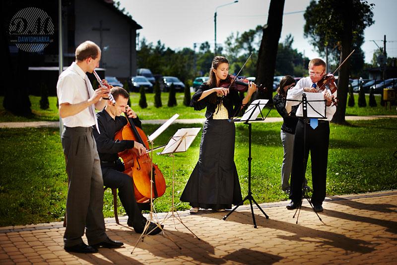 Zdjęcia orkiestry smyczkowej