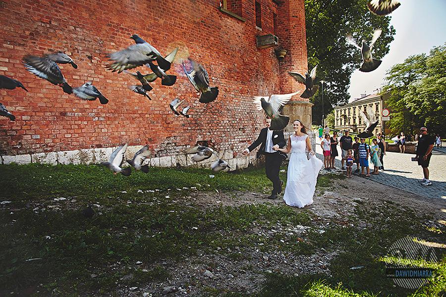 Zdjęcie z ptakami w Krakowie na plenerze ślubnym.