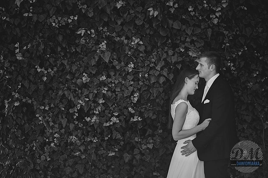 Klasyczne zdjęcia ślubne w Krakowie